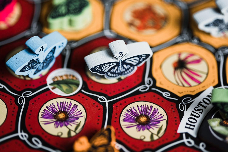 Mariposas gigamic