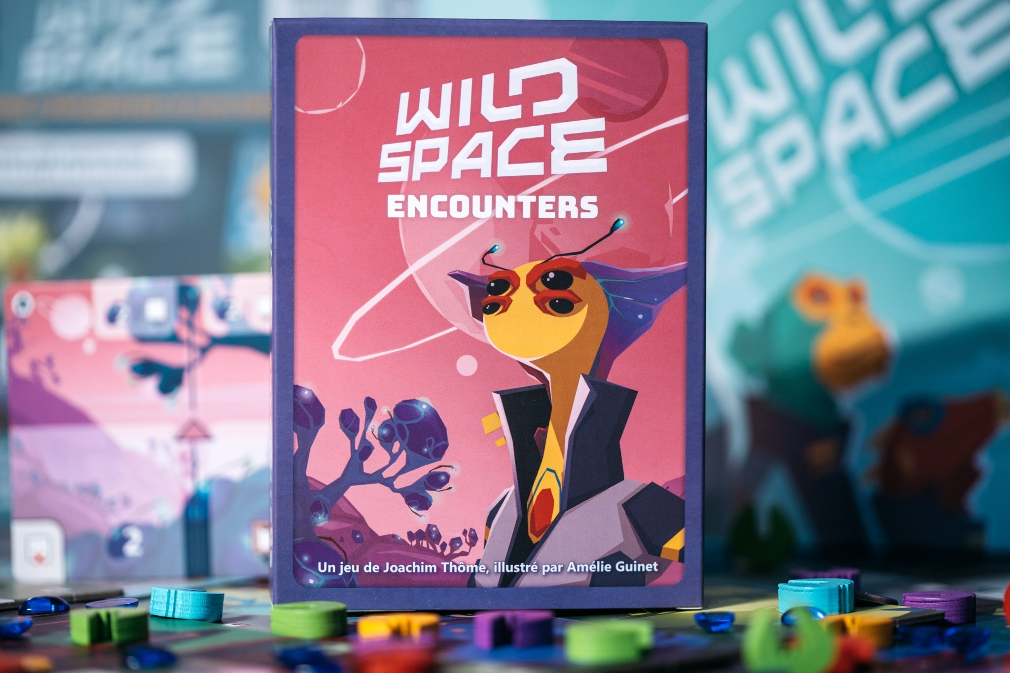 Wild space Catch up games